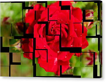 Red Rose Puzzle Canvas Print by Julia Fine Art And Photography