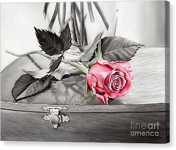 Red Rosebud On The Jewelry Box Canvas Print