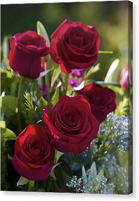 Red Roses The Language Of Love Canvas Print