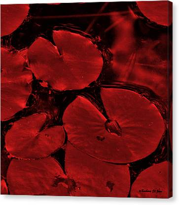 Red Ruby Tuesday Canvas Print by Barbara St Jean
