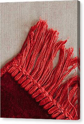 Red Rug Canvas Print by Tom Gowanlock
