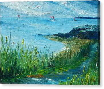 Red Sails In Galway Bay Canvas Print by Conor Murphy