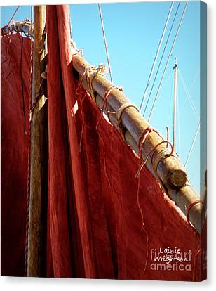 Red Sails Canvas Print by Lainie Wrightson