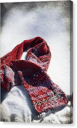 Red Scarf In Snow Canvas Print by Birgit Tyrrell