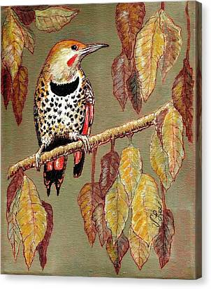 Canvas Print featuring the painting Red Shafted Flicker by VLee Watson