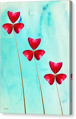 Red Shamrock Trio Canvas Print