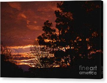 Red Sky At Night Canvas Print by Cris Hayes