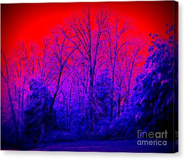 Red Sky In Morning Canvas Print