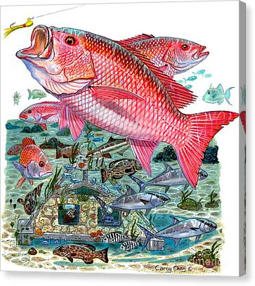 Nassau Canvas Print - Red Snapper by Carey Chen