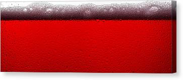 Red Sparkling Wine Canvas Print by Steve Gadomski