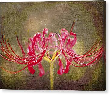 Red Spider Lily In Rain Canvas Print by Bellesouth Studio