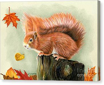 Red Squirrel In Autumn Canvas Print by Sarah Batalka