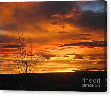 Red Sunrise Canvas Print