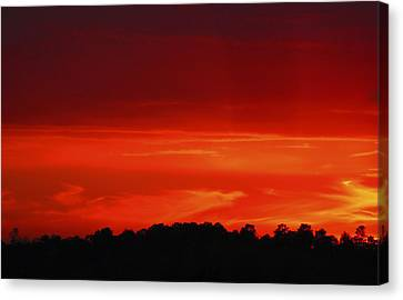 Red Sunset Canvas Print by Debra Crank