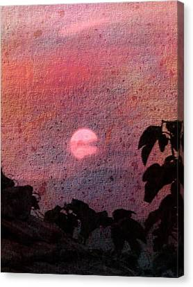 Red Sunset Canvas Print by Dorothy Berry-Lound