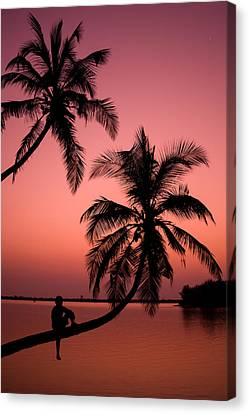 Red Sunset In The Tropics Canvas Print