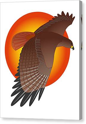Red Tail Hawk And Sun Canvas Print by Fred Croydon