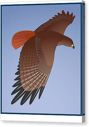 Red Tail Hawk Canvas Print by Fred Croydon