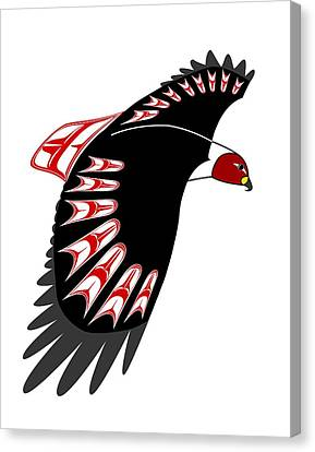 Red Tail Hawk Nw Native  Canvas Print by Fred Croydon