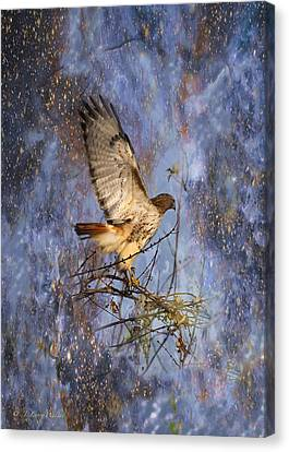 Canvas Print featuring the digital art Red-tailed Hawk Applauding The Early Morning Sunrise by J Larry Walker
