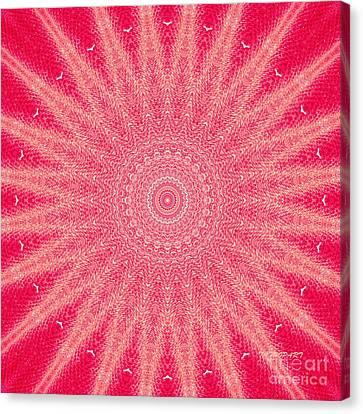 Red   Canvas Print by Tatjana Popovska