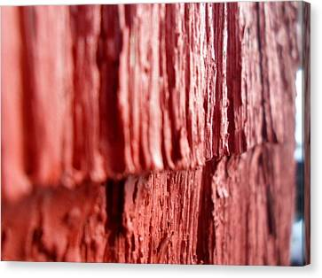 Red Texture Canvas Print by Jenna Mengersen