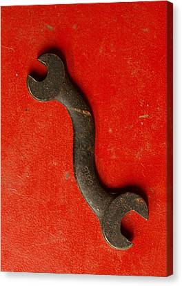 Red  Canvas Print by Tom Druin