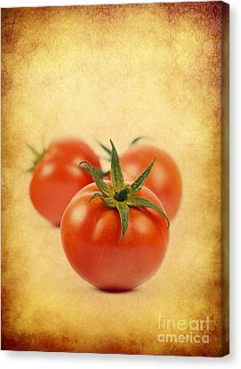 Canvas Print featuring the photograph Red Tomato by Mohamed Elkhamisy