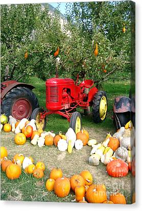 Canvas Print featuring the photograph Red Tractor Under The Gourds by Joyce Gebauer