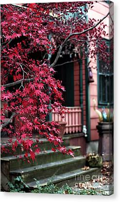 Red Tree Canvas Print by John Rizzuto