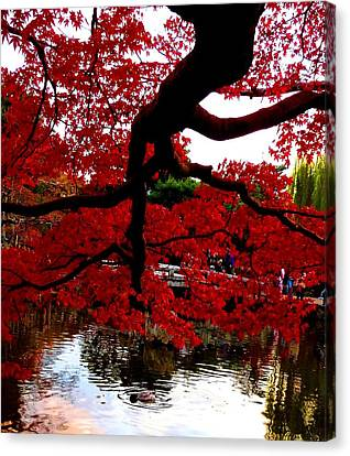 Canvas Print featuring the photograph Red Tree by Julia Ivanovna Willhite