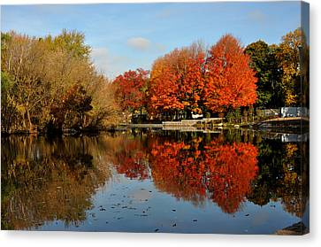 Red Trees Double Canvas Print