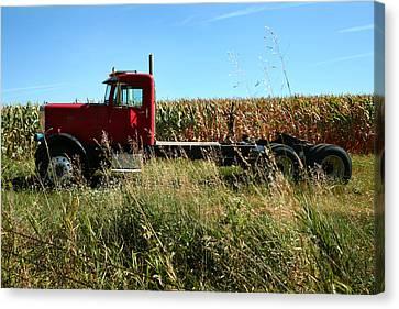 Red Truck In A Corn Field Canvas Print