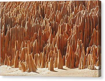 Canvas Print featuring the photograph red Tsingy Madagascar 1 by Rudi Prott