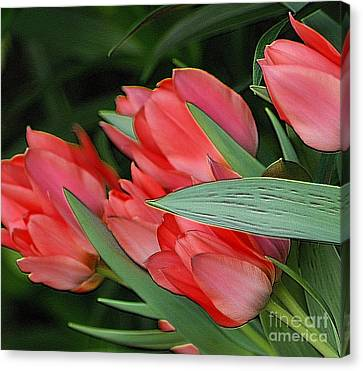 Red Tulips Canvas Print by Kathleen Struckle