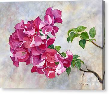 Dark Pink Canvas Print - Red Violet Bougainvillea With Textured Background by Sharon Freeman
