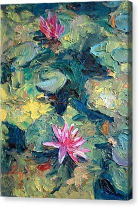 Red Waterlily  Canvas Print