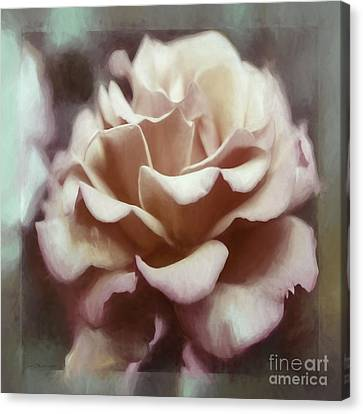 Canvas Print featuring the photograph Red White Rose by Jean OKeeffe Macro Abundance Art