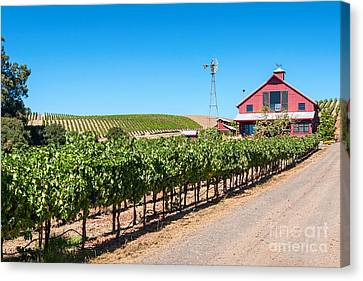Red Wine Barn - Beautiful View Of Wine Vineyards And A Red Barn In Napa Valley California. Canvas Print