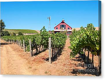 Red Wine Barn - Beautiful View Of Wine Vineyards And A Red Barn In Napa Valley. Canvas Print