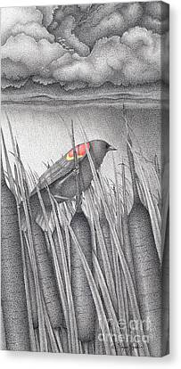 Stormy Canvas Print - Red-winged Blackbird by Wayne Hardee