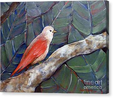 Red Winged Canvas Print by Susan Fisher