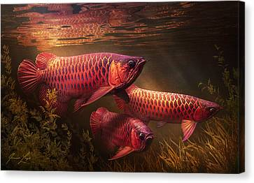 Aquatic Plant Canvas Print - Red_alignment by Javier Lazo
