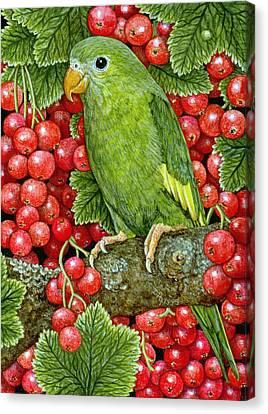 Berry Canvas Print - Redcurrant Parakeet by Ditz