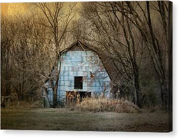 Winter In The Country Canvas Print - Redtail At The Blue Barn by Jai Johnson