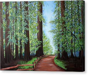 Redwood Forest Path Canvas Print by Penny Birch-Williams