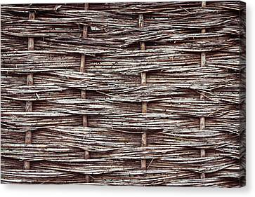 Reed Fence Canvas Print by Tom Gowanlock