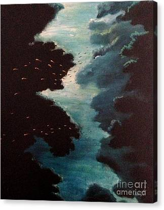Reef Pohnpei Canvas Print by Karen  Ferrand Carroll