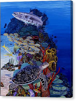 Reefs Edge Re0025 Canvas Print by Carey Chen