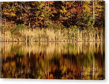 Refections In Water Canvas Print by Dan Friend